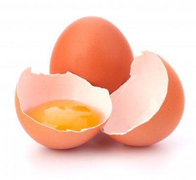 photo_egg.jpg
